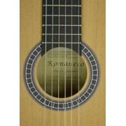 Струни за класически китари