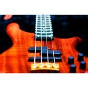 Струни - бас китари