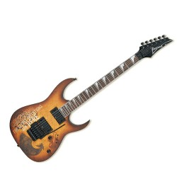 Електрическа китара Ibanez RG320PG-P2 – 6 струни