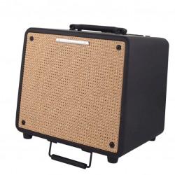 Комбо усилвател за акустична китара Ibanez T80N U